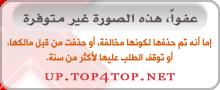 ফটো রিপোর্ট | আনসার আল-ইসলামের সামরিক প্রশিক্ষণ কোর্স