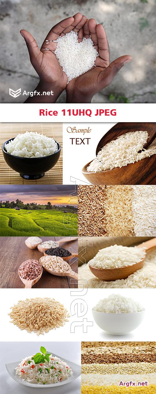Rice 11UHQ JPEG